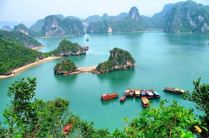 An overview of Ha Long Bay