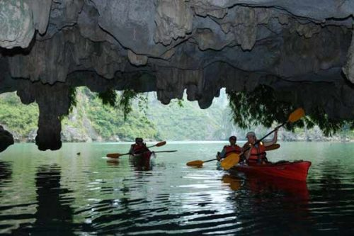 Many experiences you can take away when visiting Luon cave by Kayaks
