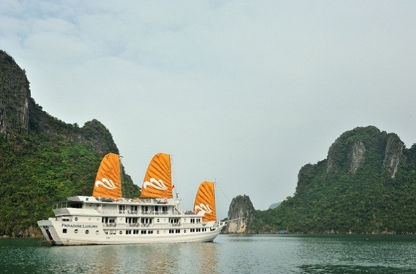 Contemplating the beauty of Ha Long Bay with the Paradise Luxury Cruise