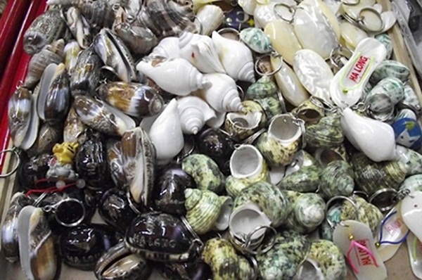Souvenirs made from sea shells