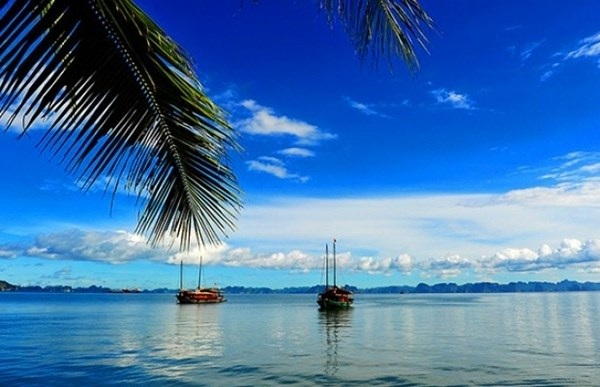 The atmosphere in the morning on Quan Lan Island can ease tourists even the most fastidious travelers
