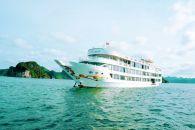 Starlight-Cruise