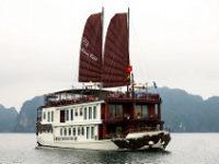 Violet cruise