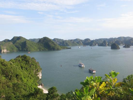 The V'spirit cruise should be your choice to cruise in Halong Bay
