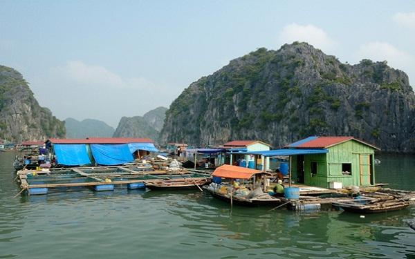 A Halong Bay's fishing village