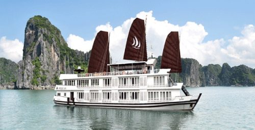 Pelican Cruise - Halong Bay