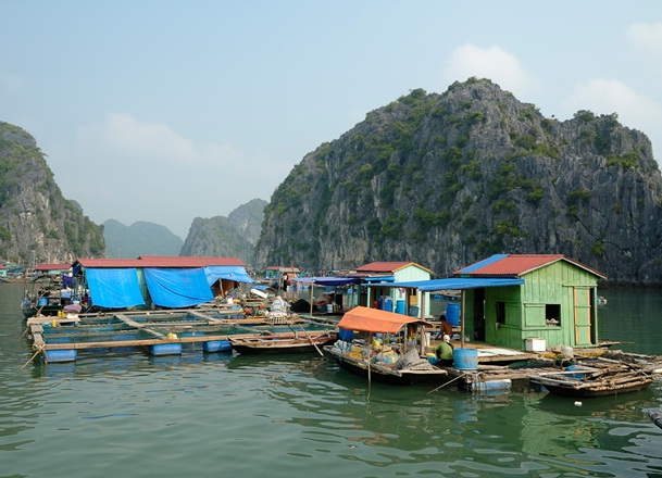 Van Gia fishing village