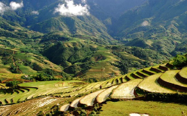 Rice terraces and wonderful mountainous scenery of Sapa