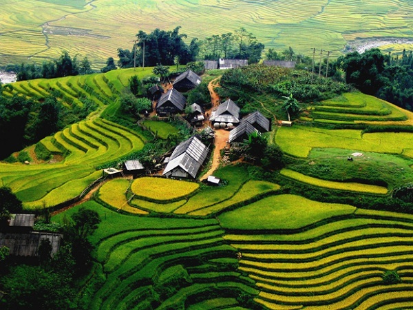 Tips for a great trip in Vietnam