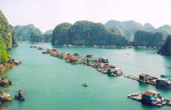 Lan Ha Bay is the wild bay for solo travellers to discover in Halong Bay