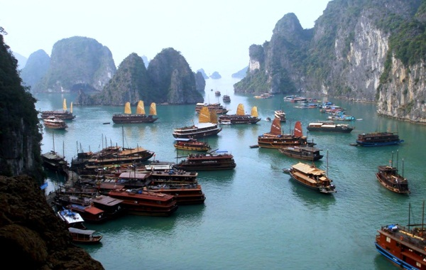 Discovery life in Halong Bay
