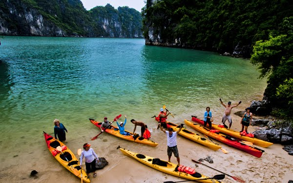 Guided kayaking tour