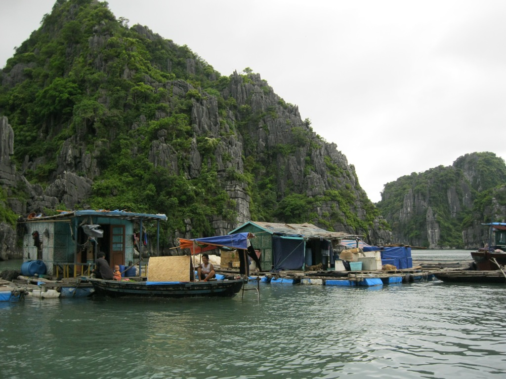 A simple life of locals in Ba Hang floating village