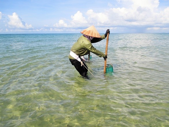 While men go fishing offshore, women catch shells near shore to support their families