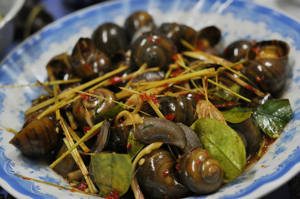 Spicy fried sea snails are strongly favored in Halong