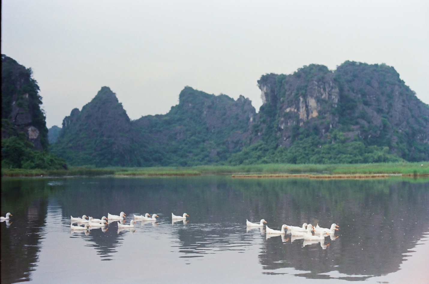 The peaceful beauty of Van Long lagoon on autumn