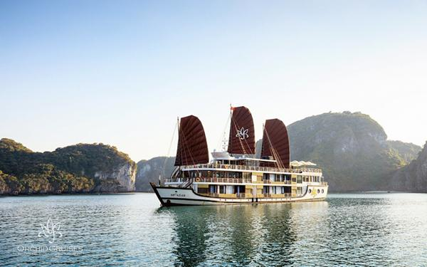 Best cruise in Halong Bay: A wonderful sight of the Orchid cruise