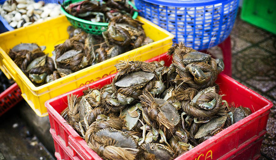 The market sells a bunch of seafood, from crabs, lobsters, clams, prawns, sea-snail and more