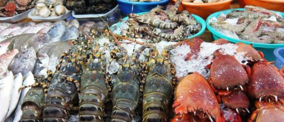 fresh seafood in Halong