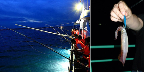 Catching squids at night on the cruise in Halong Bay