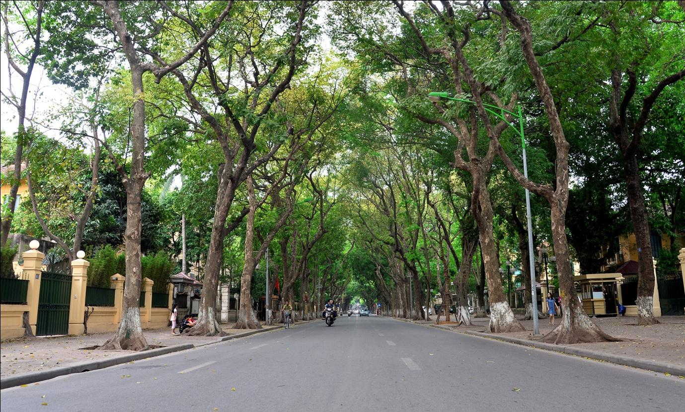 Can you imagine how peaceful Hanoi streets are on the first day of the New Year