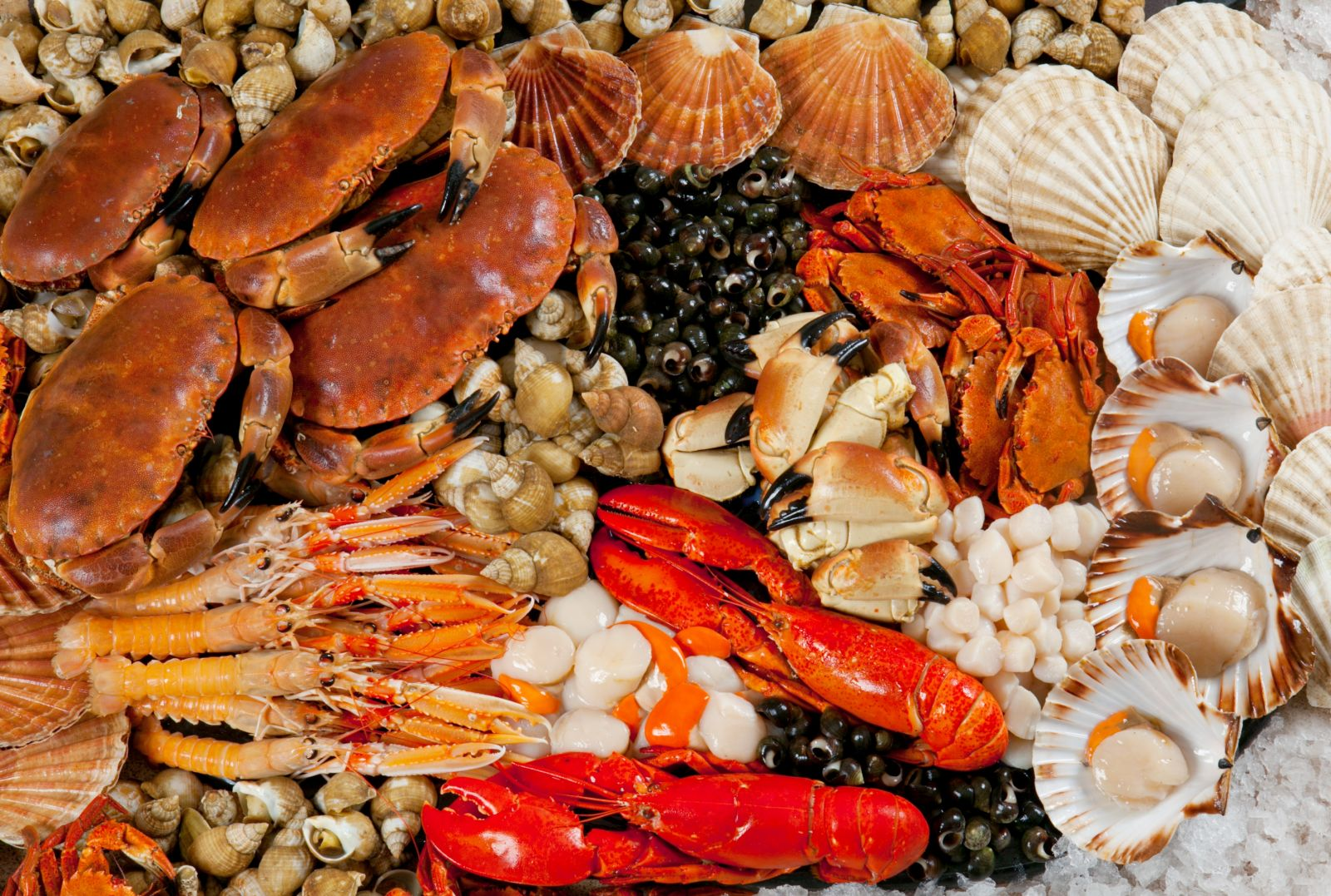 Seafood in Halong
