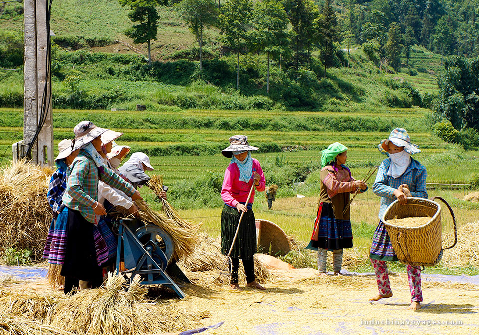 Explore sapa Vietnam (2)