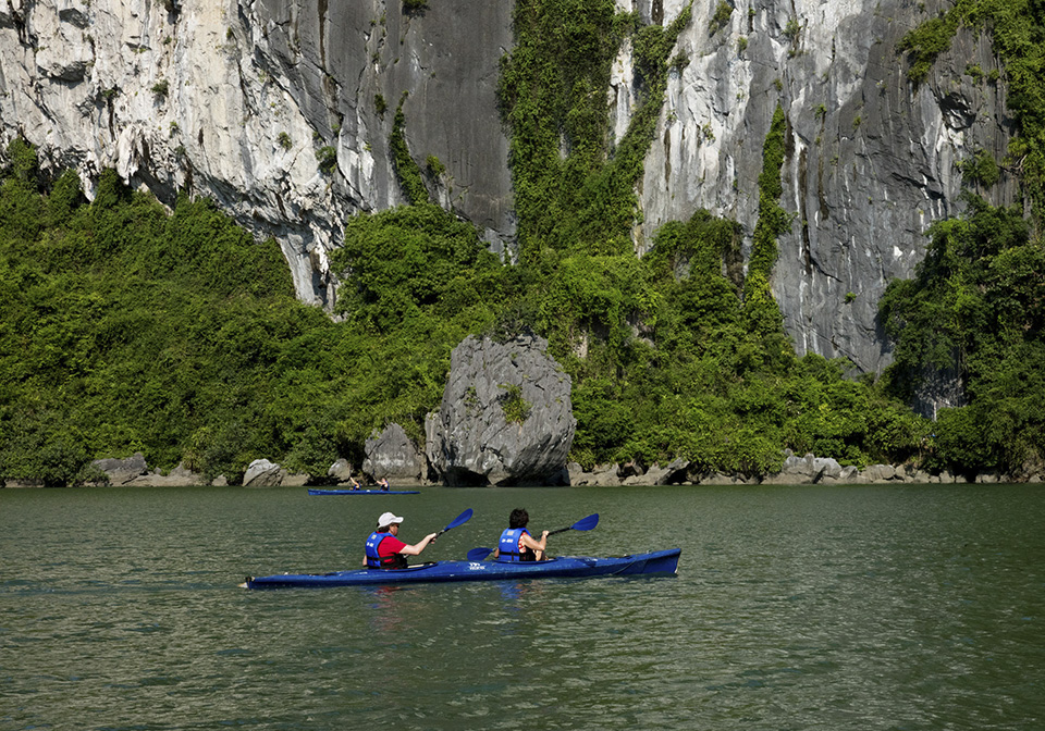Orchid Cruise Kayak