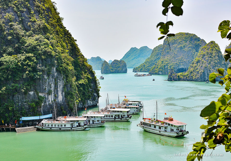 Halong Bay private cruise – How to choose a suitable one