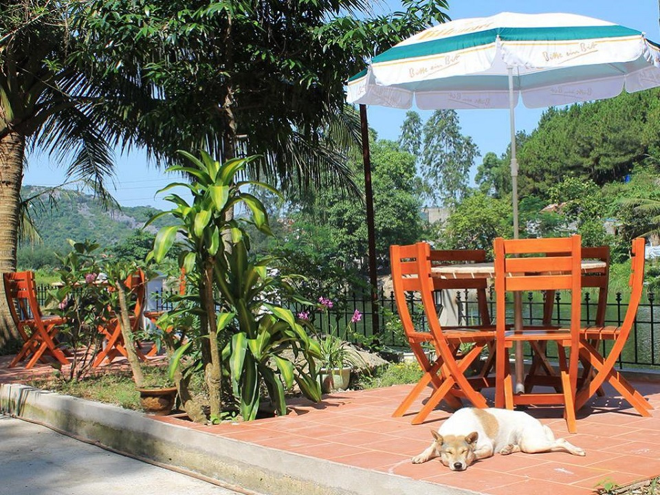 Little Cat Ba Homestay